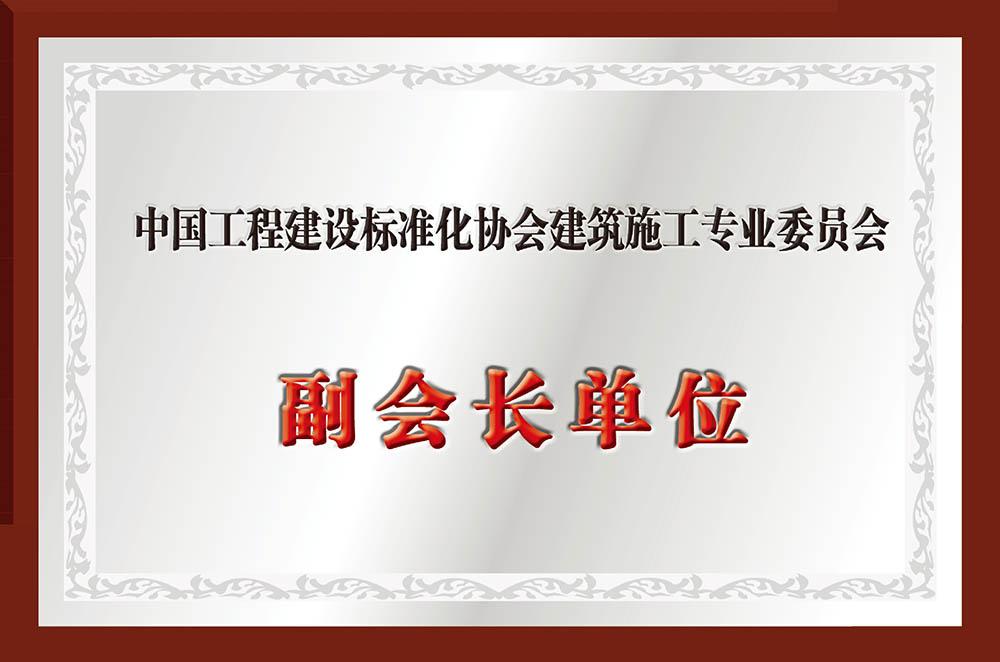 建筑施工专业委员会副会长单位